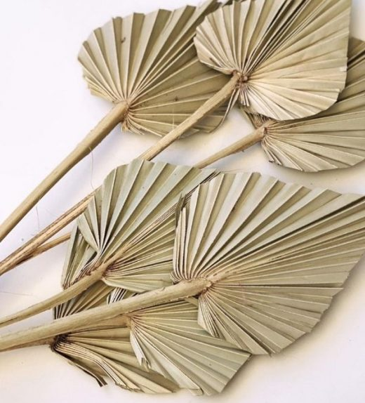 Natural Palm Spears