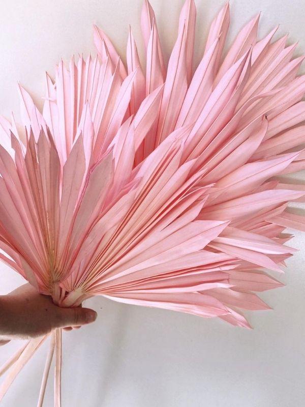 Sun Cut Palm - Pink