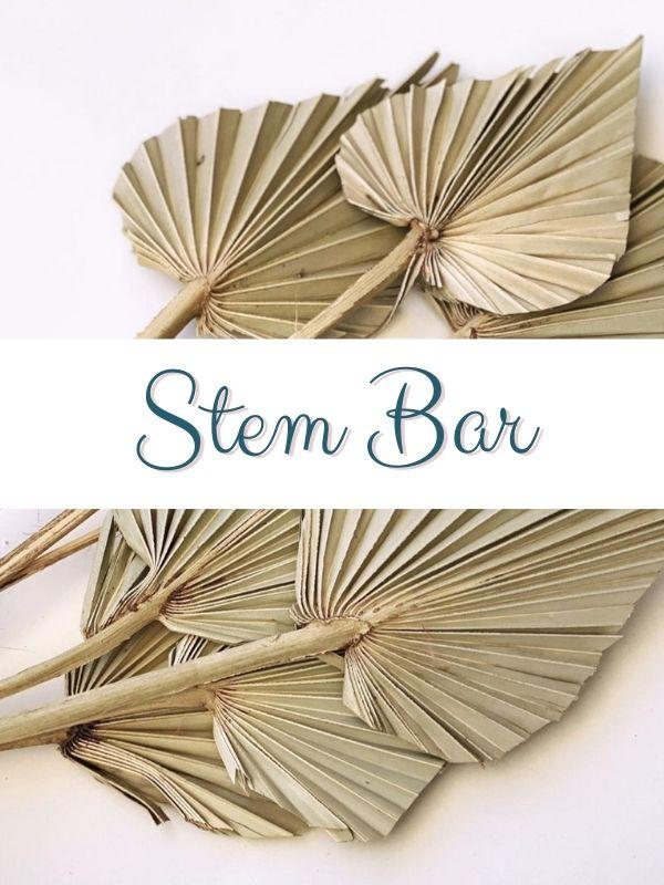 Stem Bar