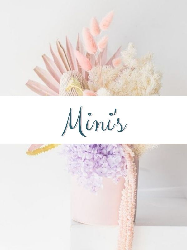 dried minis
